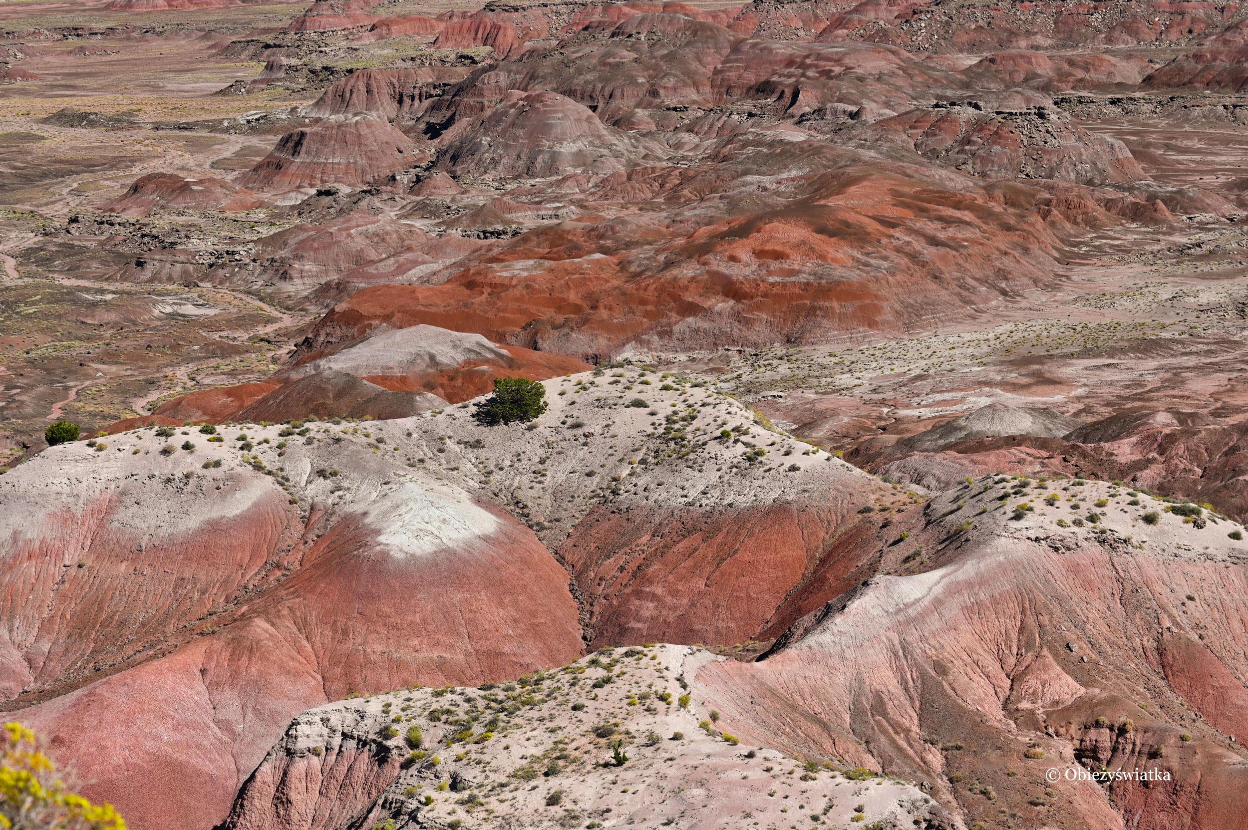 Kolorowo - Painted Desert, Arizona
