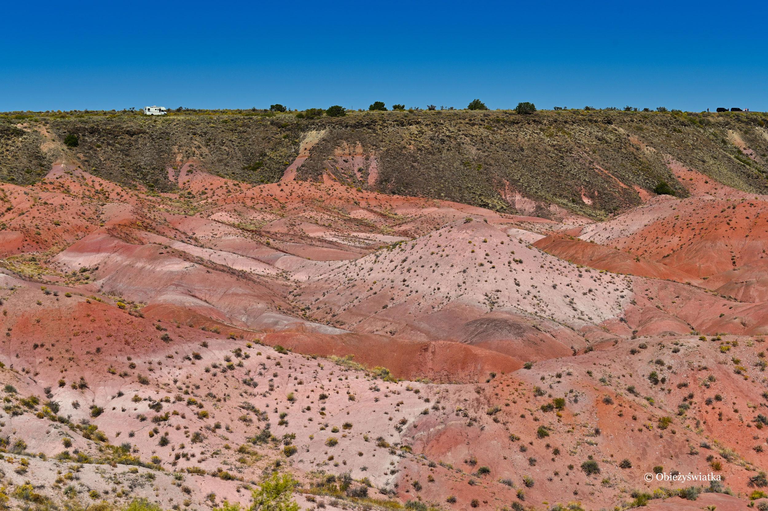 Czerwienie i rudości przeważają - Painted Desert, Arizona