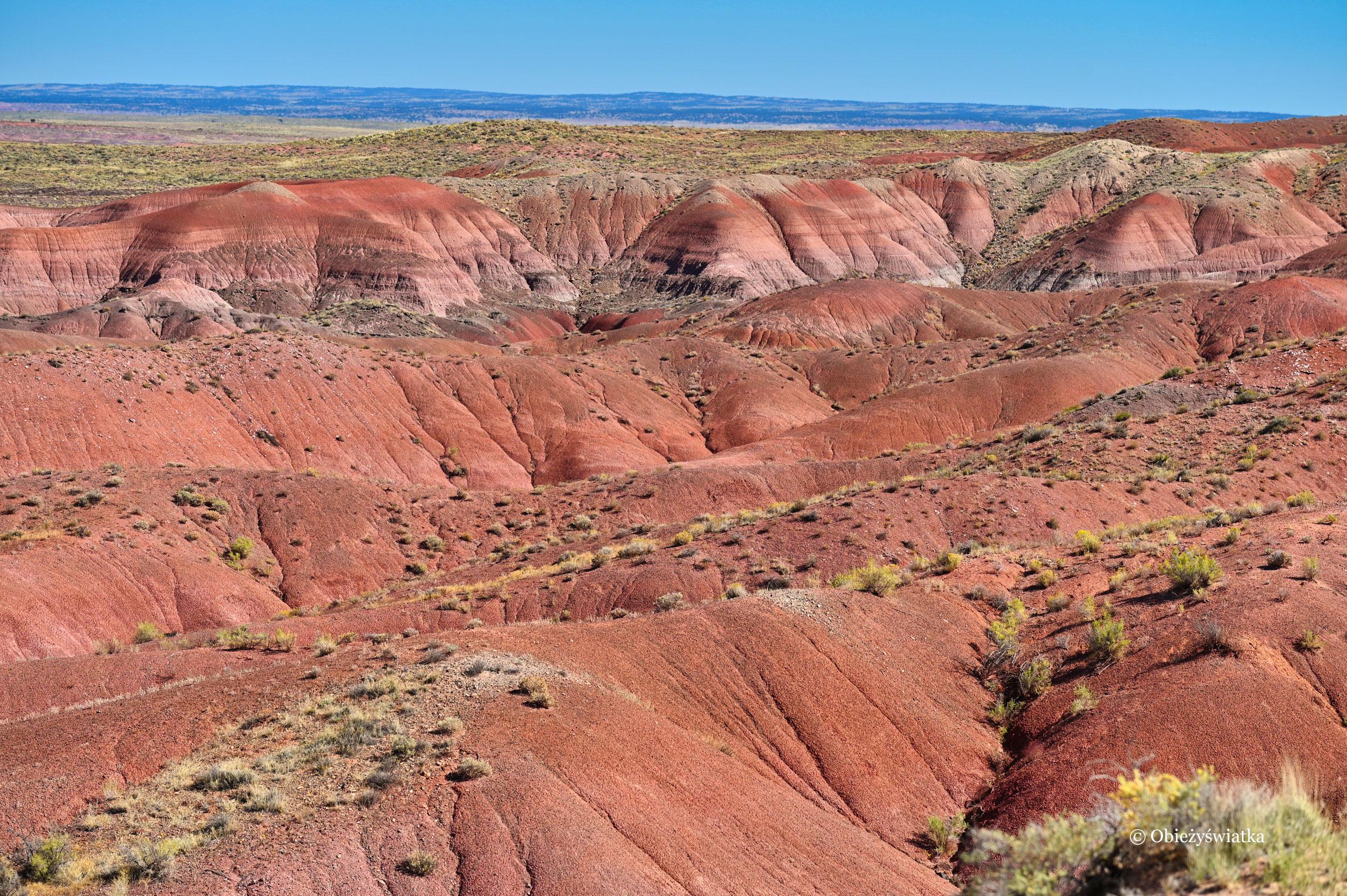Kolorowe wzgórza aż po horyzontu kres... - Painted Desert, Arizona