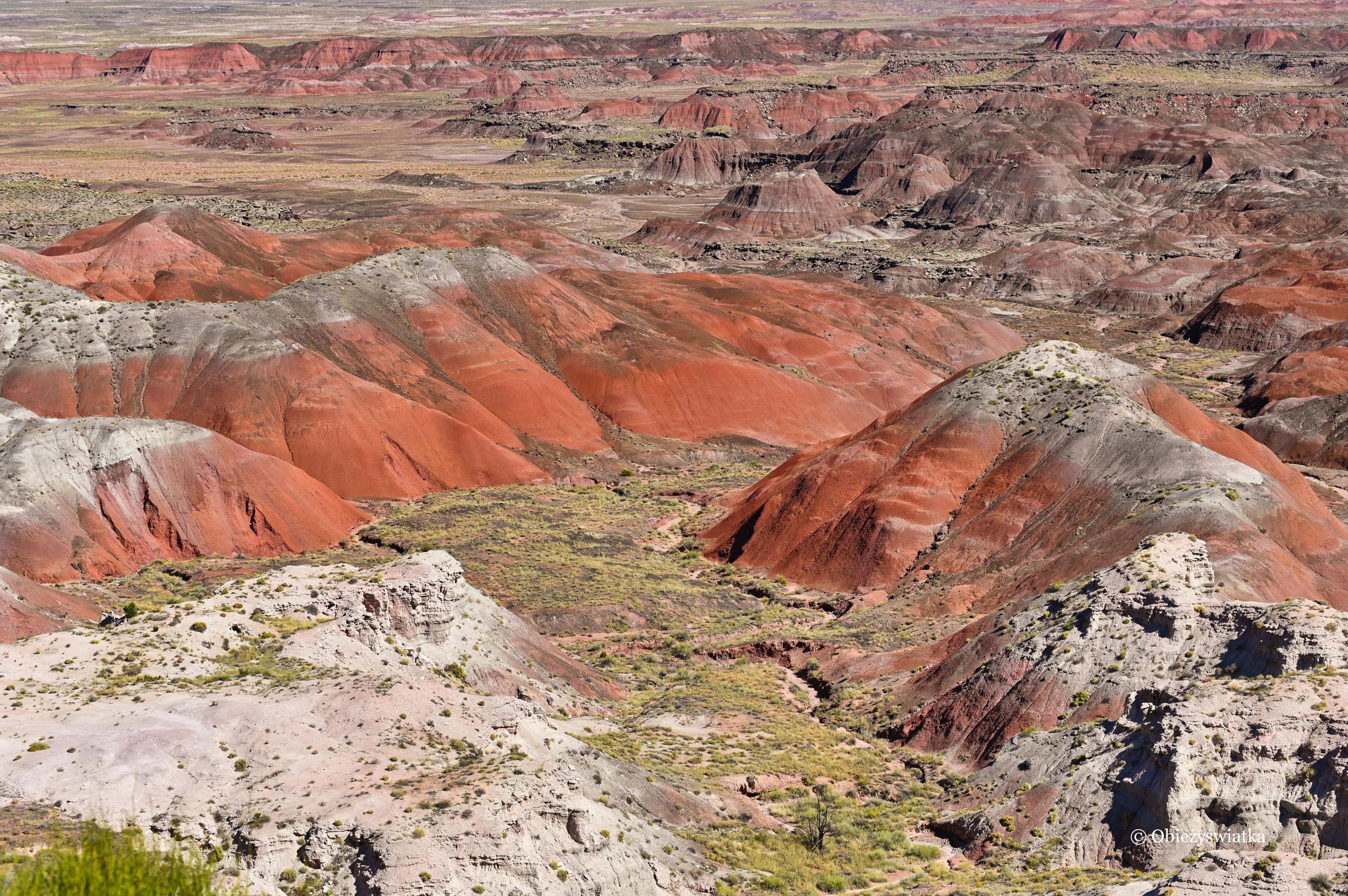 Kolorowe wzgórza - Painted Desert, Petrified Forest National Park