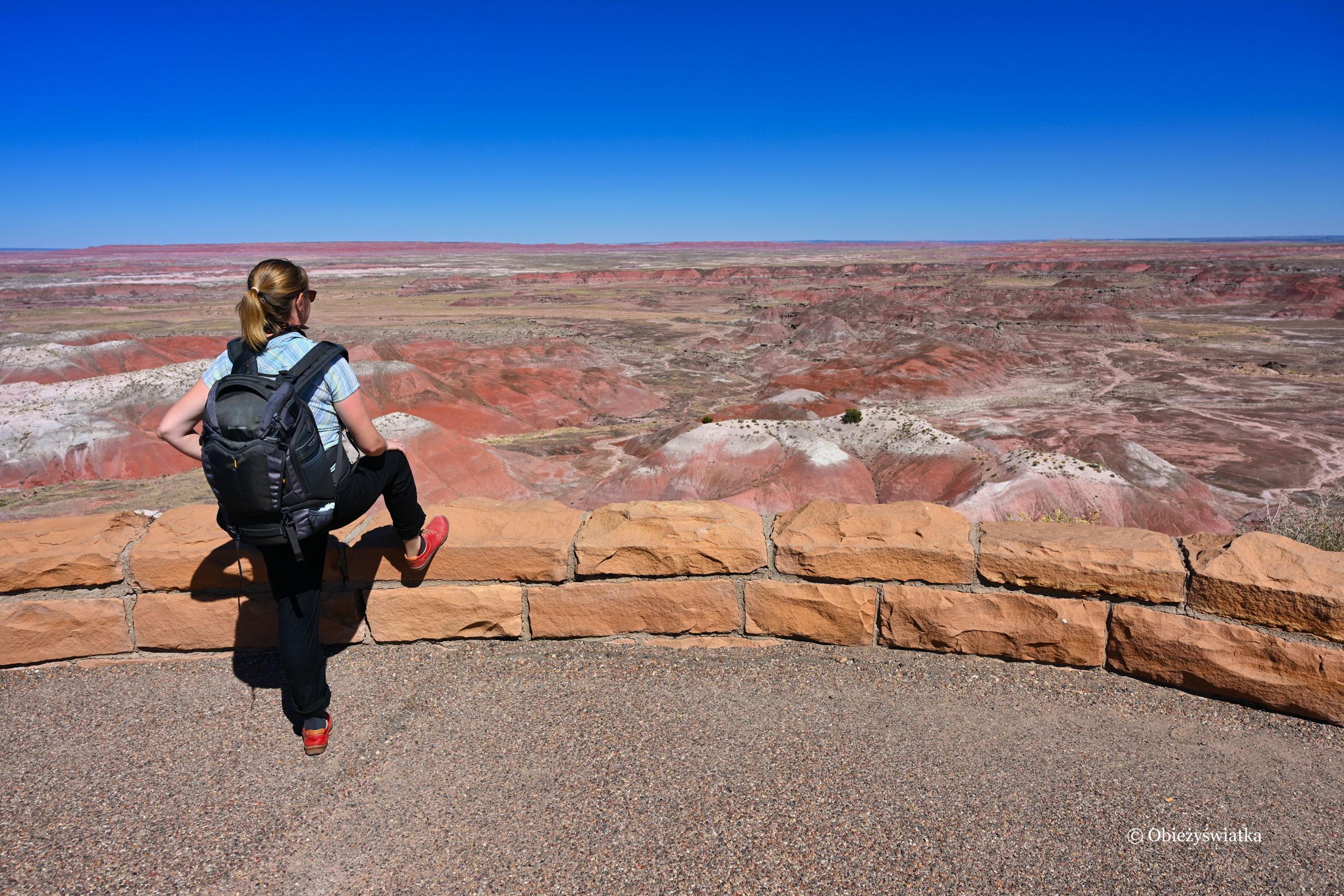 Cieszyć się chwilą i zapamiętać ten piękny krajobraz - Painted Desert, Arizona