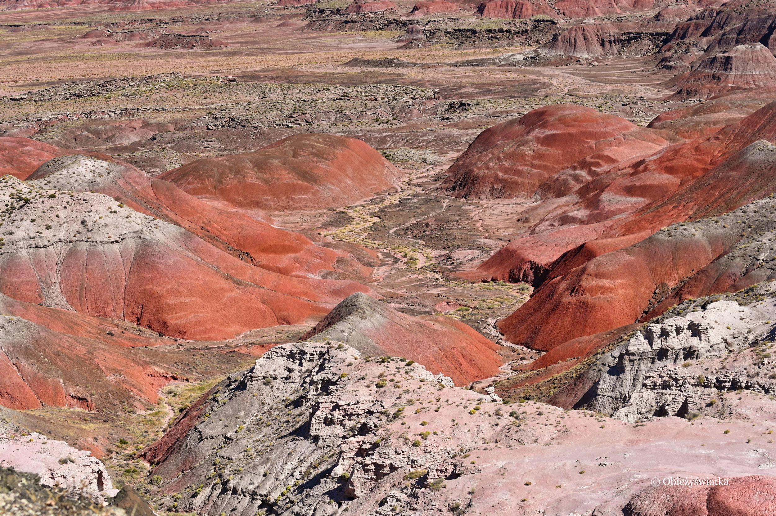 Fantastyczny krajobraz - Painted Desert, Arizona