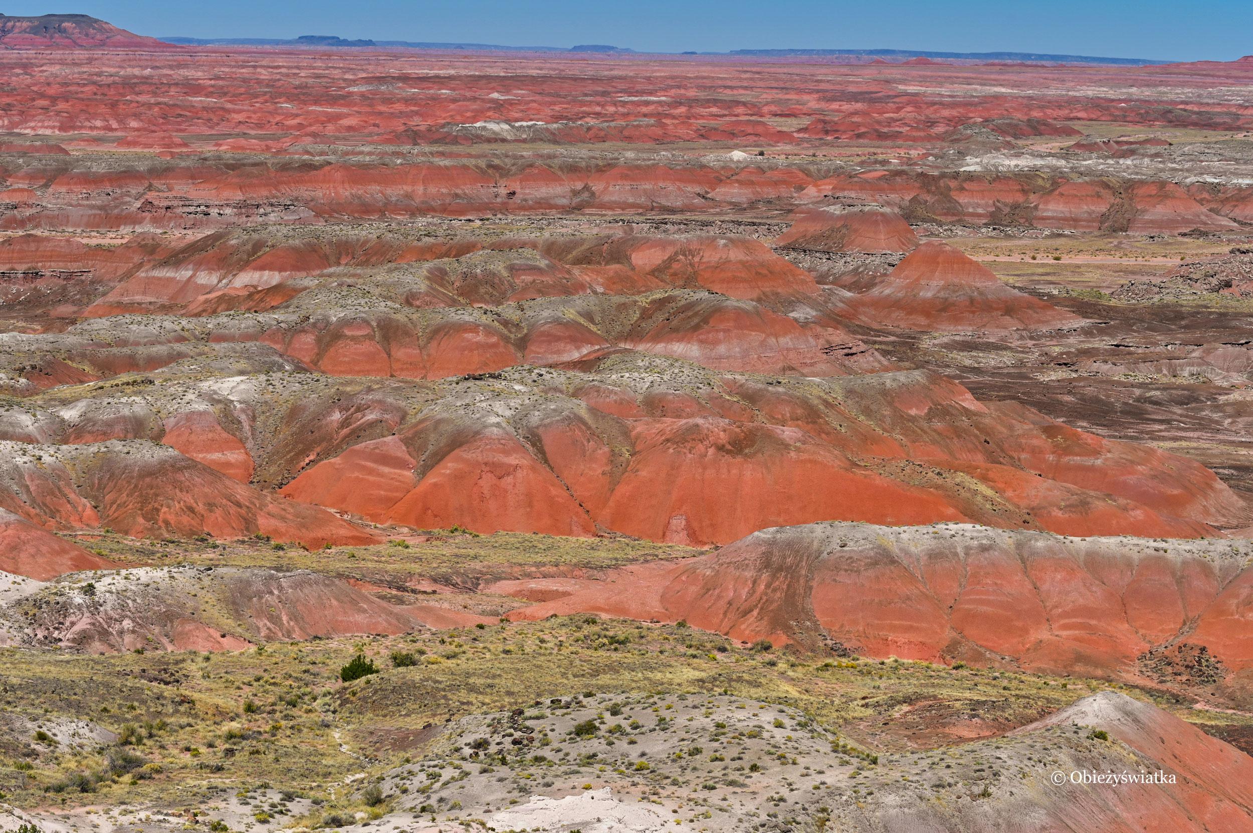 Painted Desert w Arizonie