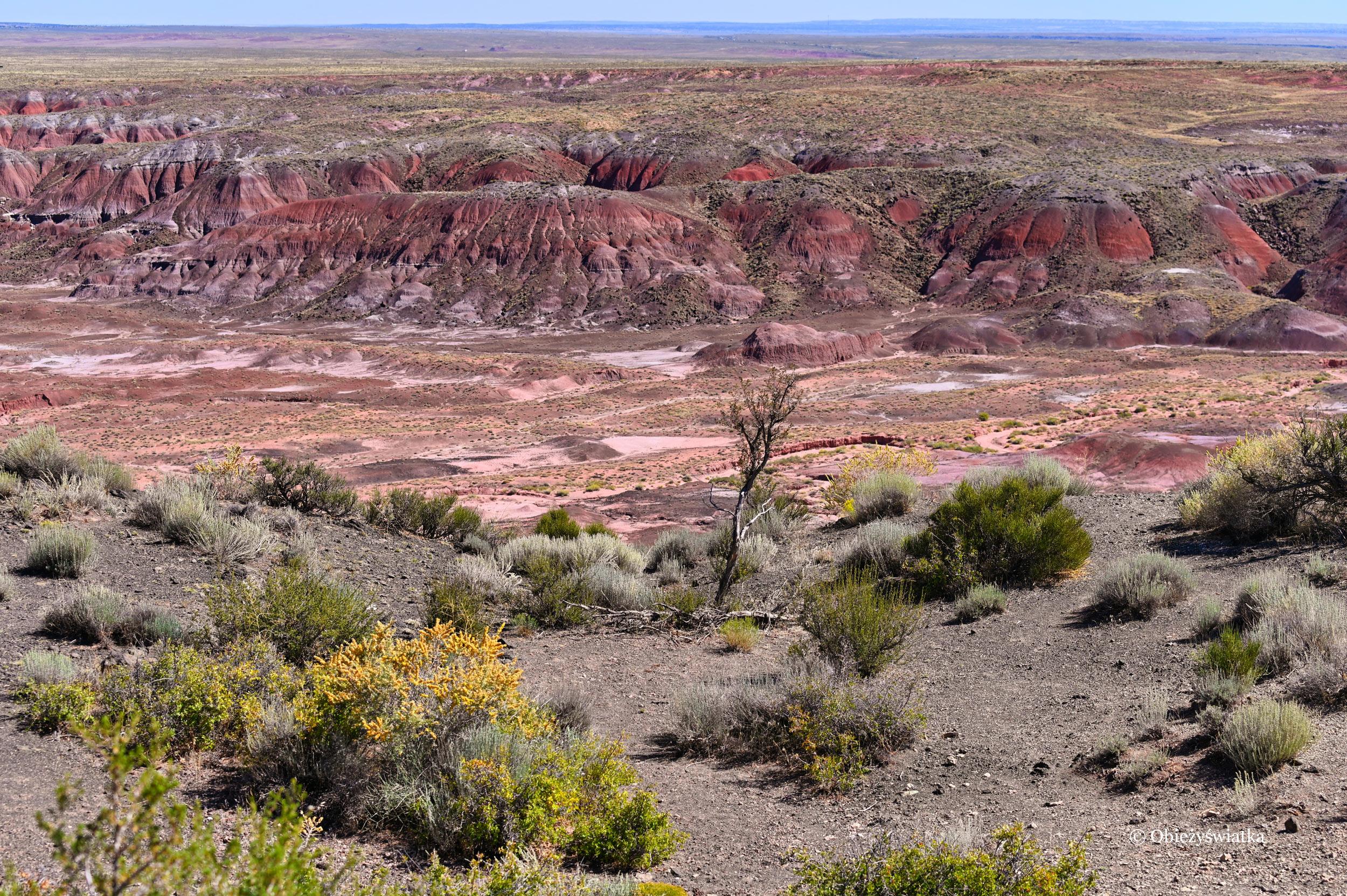 Pustynny krajobraz - Painted Desert, Arizona