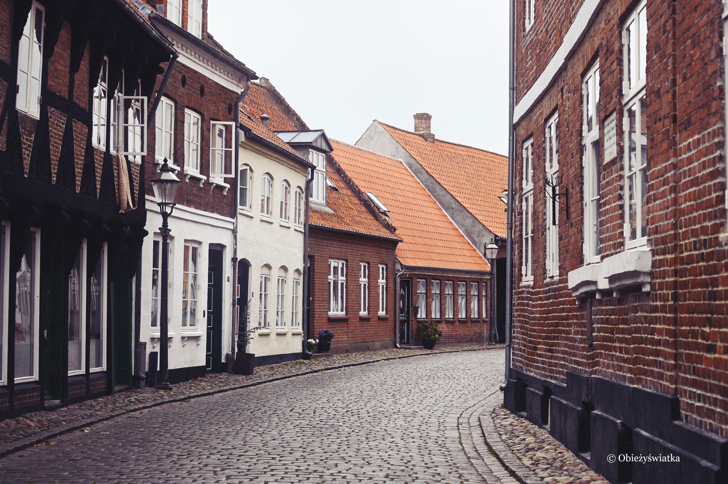 W Ribe - najstarszym miasteczku Danii