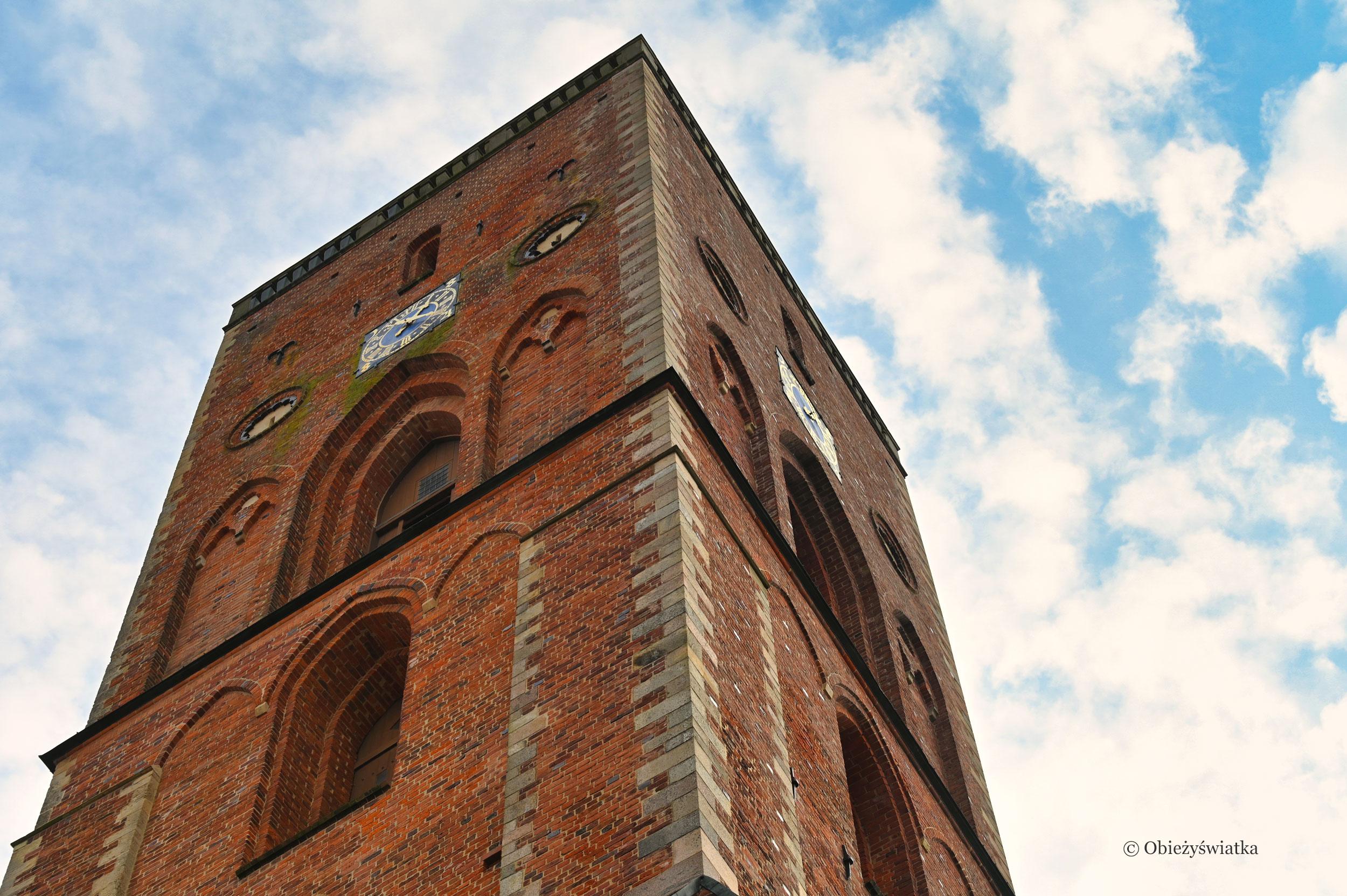 Katedra w Ribe, Dania