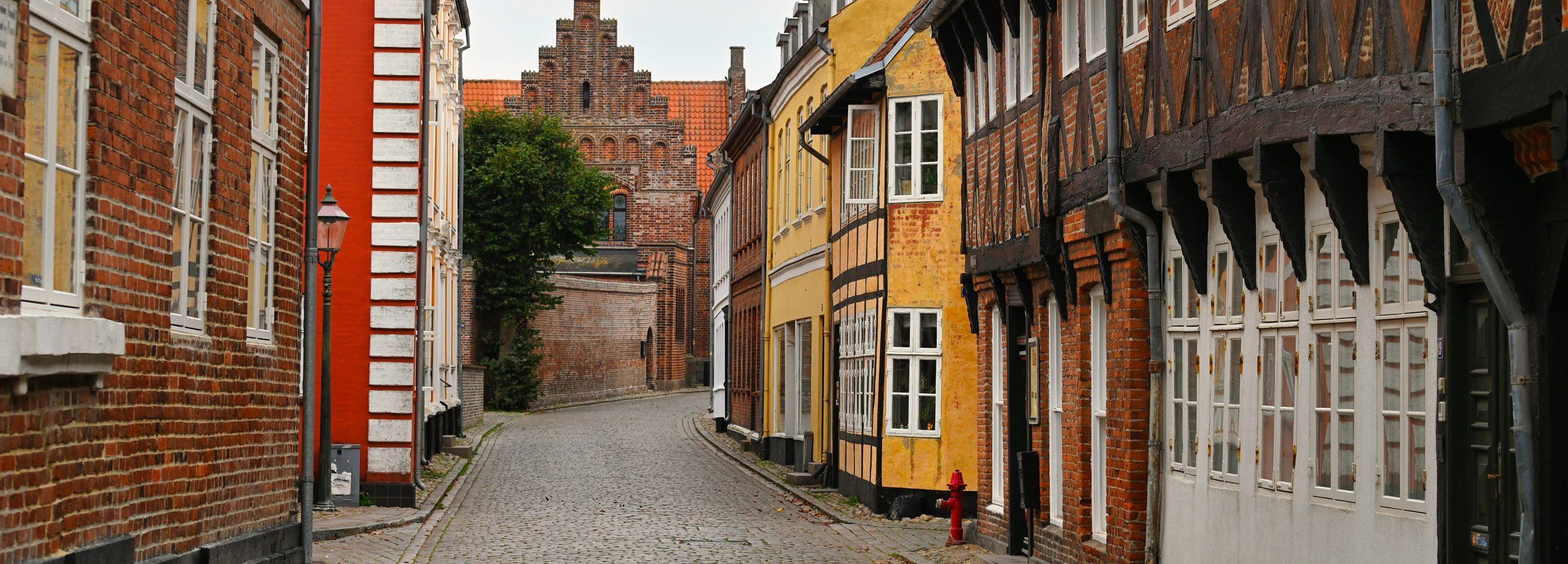 Ribe, najstarsze miasto Danii