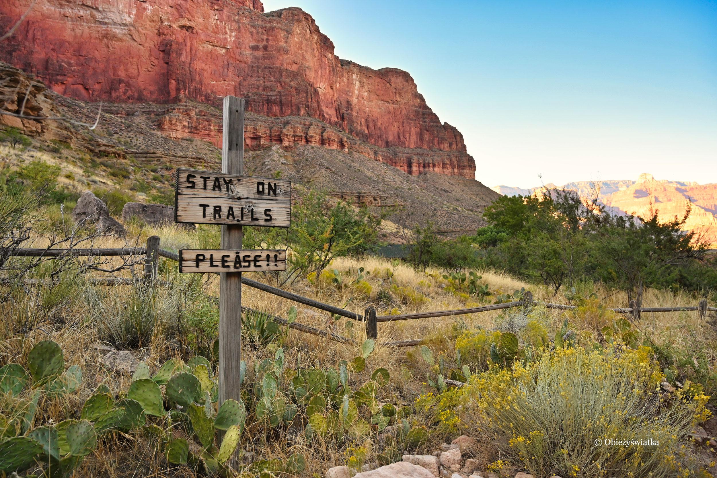 W Wielkim Kanionie, Grand Canyon, Arizona