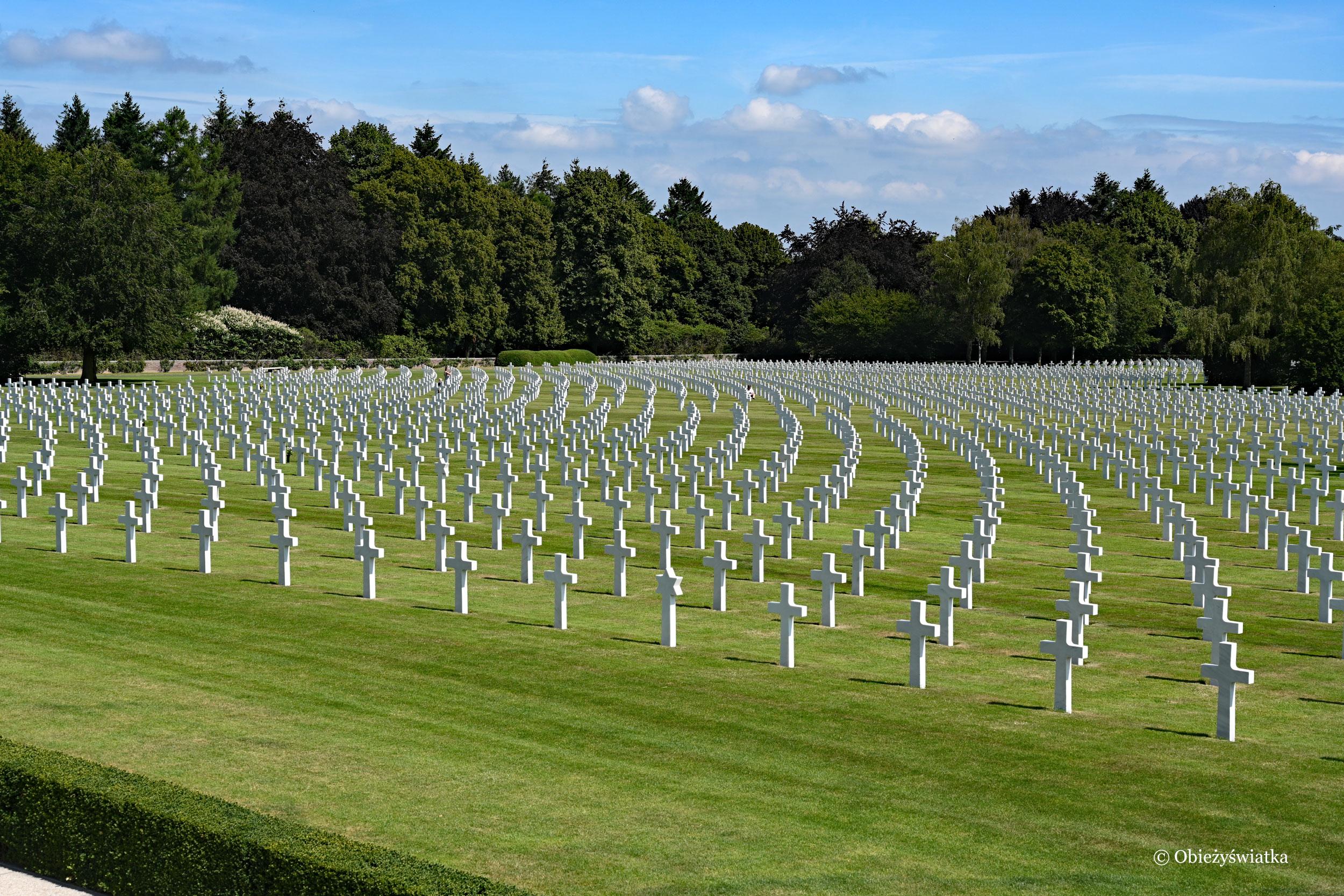 Prawie 8000 grobów .... - Amerykański Cmentarz Wojskowy w Belgii