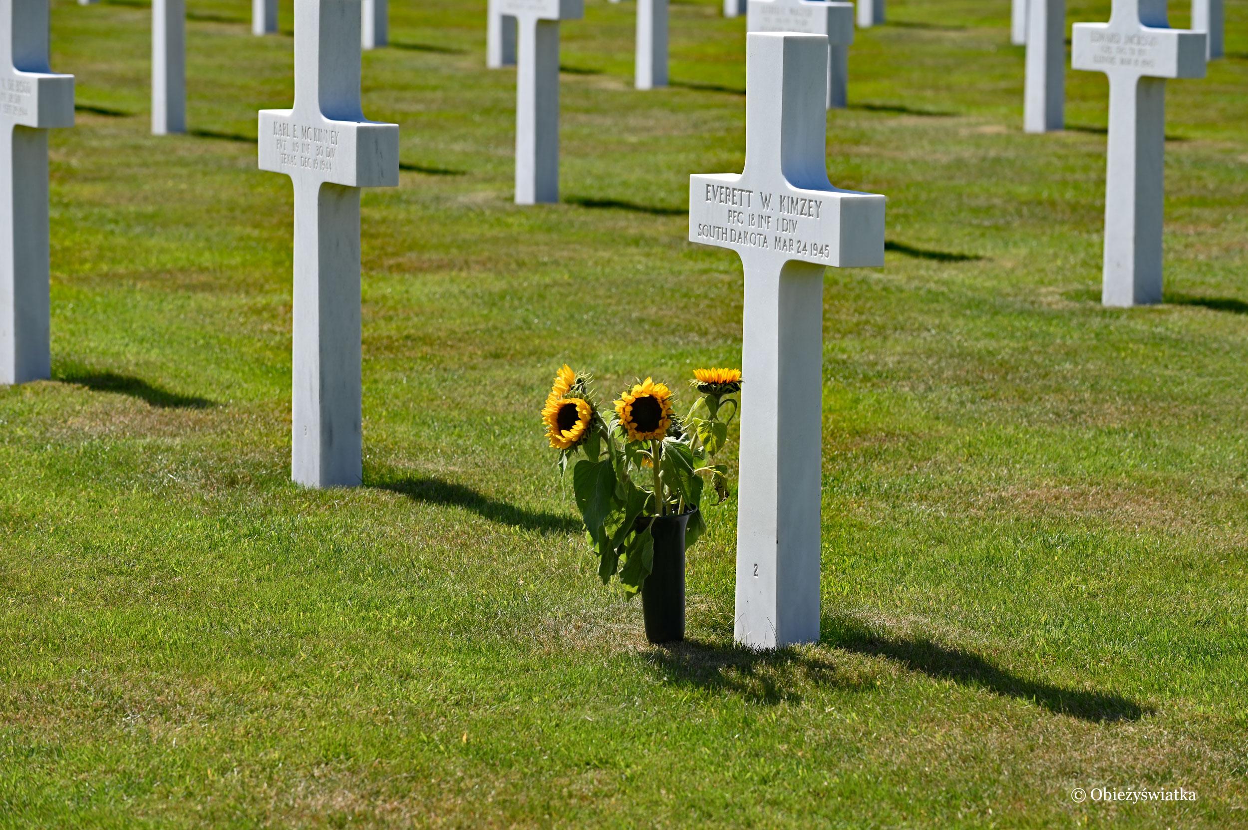 Nagrobki na amerykańskim cmentarzu w belgijskiej miejscowości Henri Chapelle