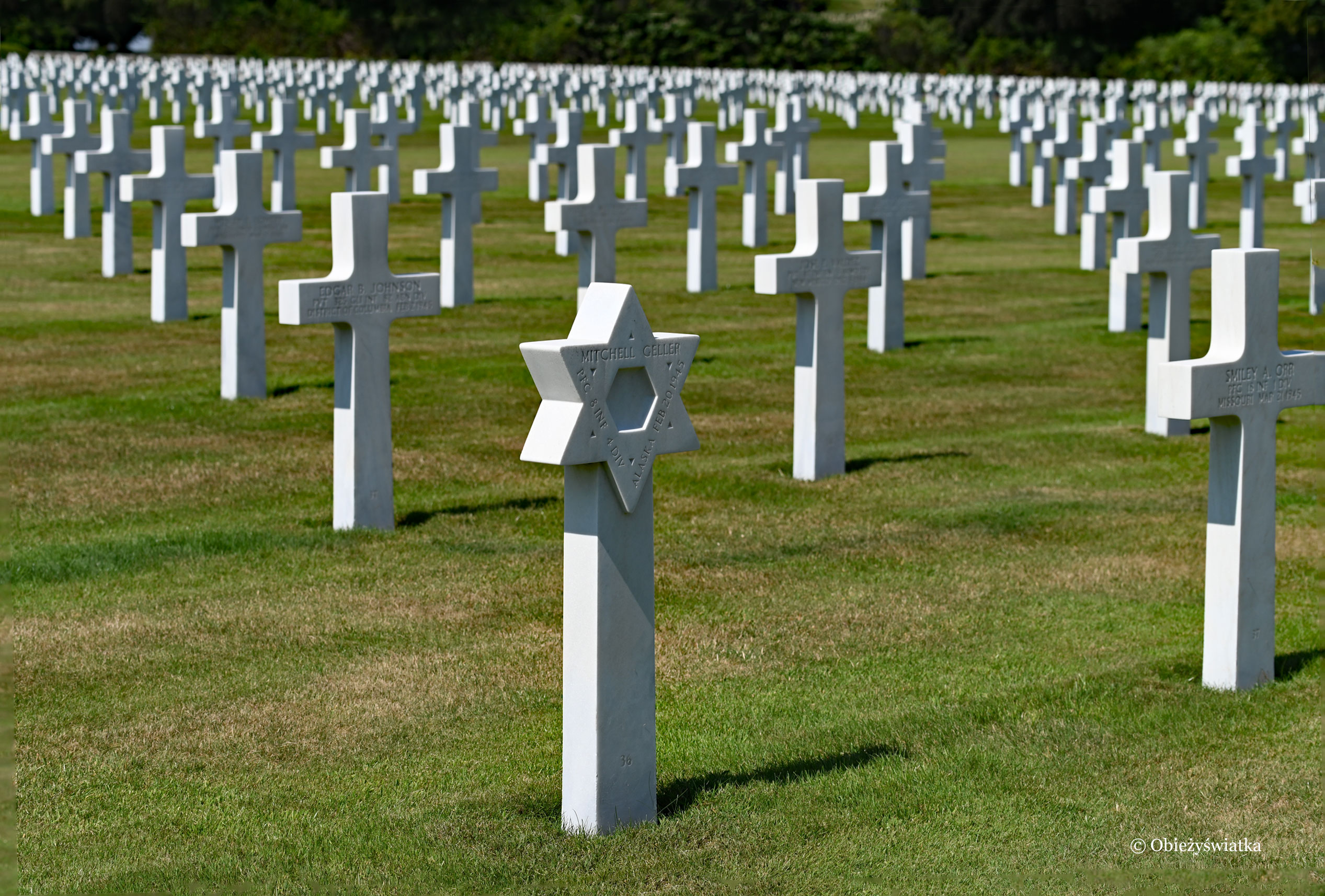 Między krzyżami Gwiazda Dawida - American Cementery and Memorial. Henri Chapelle, Belgia