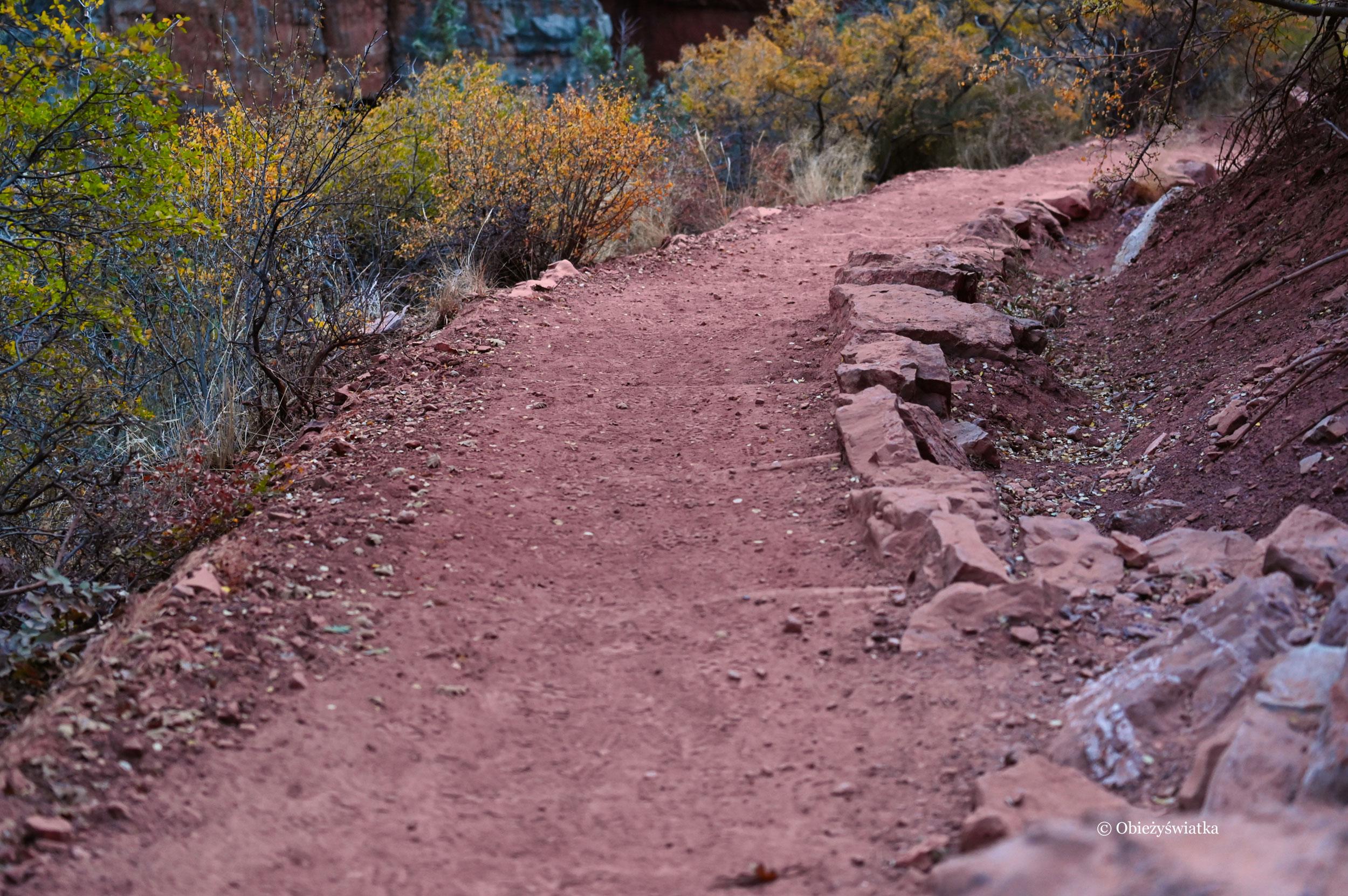 Czerwona ziemia - szlak North Kaibab Trail, Grand Canyon, Arizona