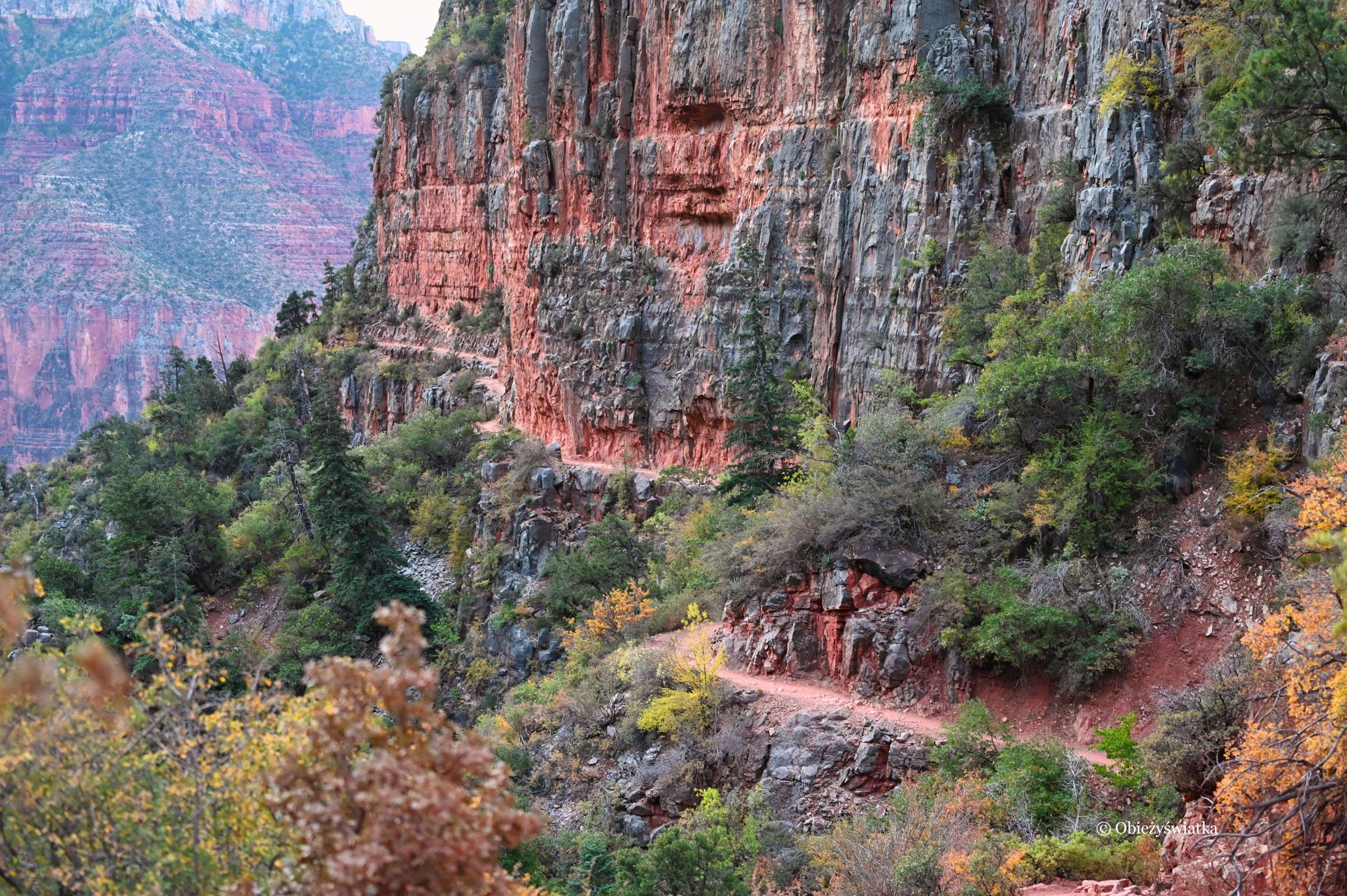 Szlak North Kaibab Trail, wczesny ranek w drodze do rzeki Kolorado, Grand Canyon