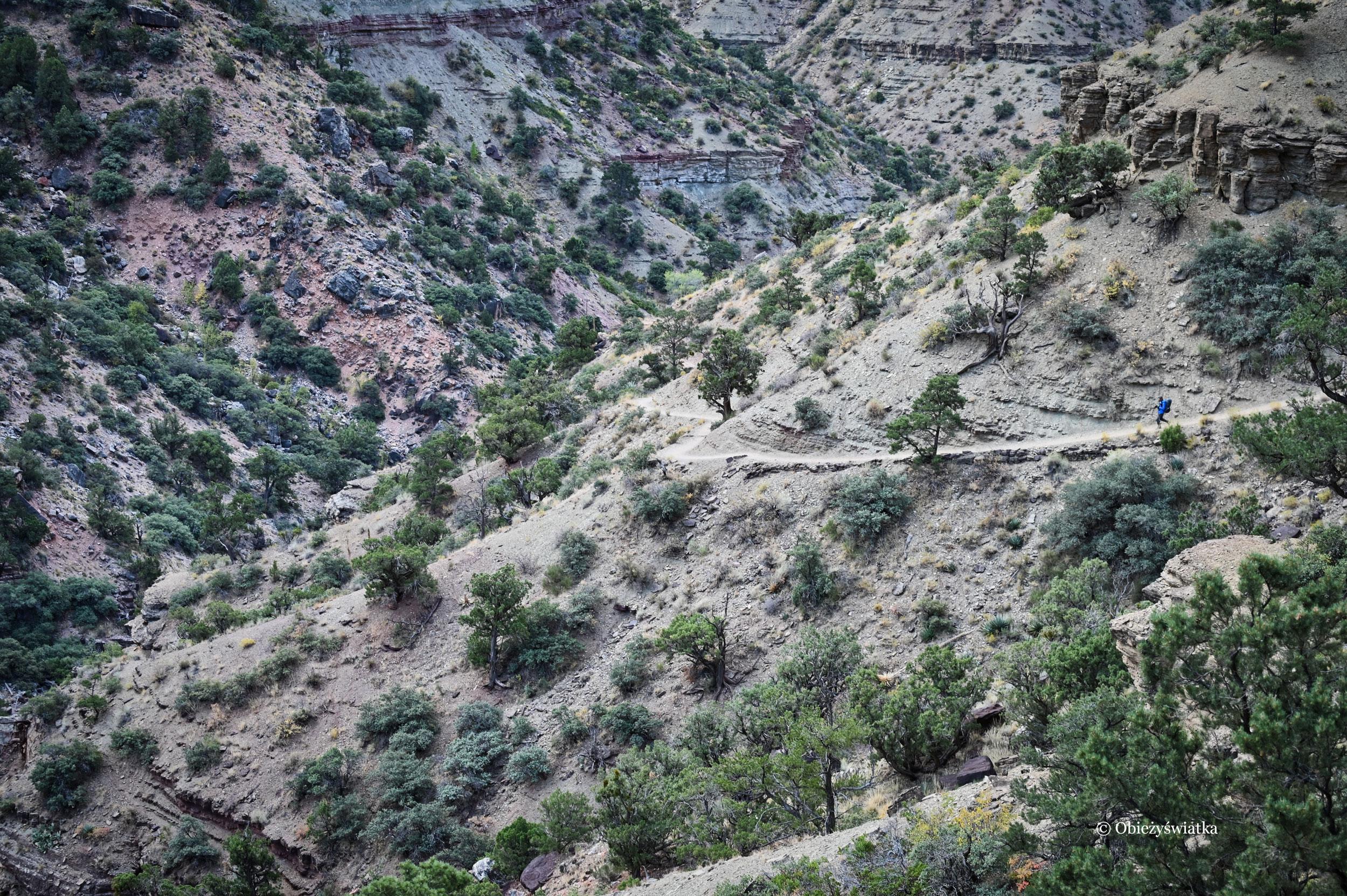 Wczesnym rankiem na szlaku North Kaibab Trail, zejście na dno Wielkiego Kanionu