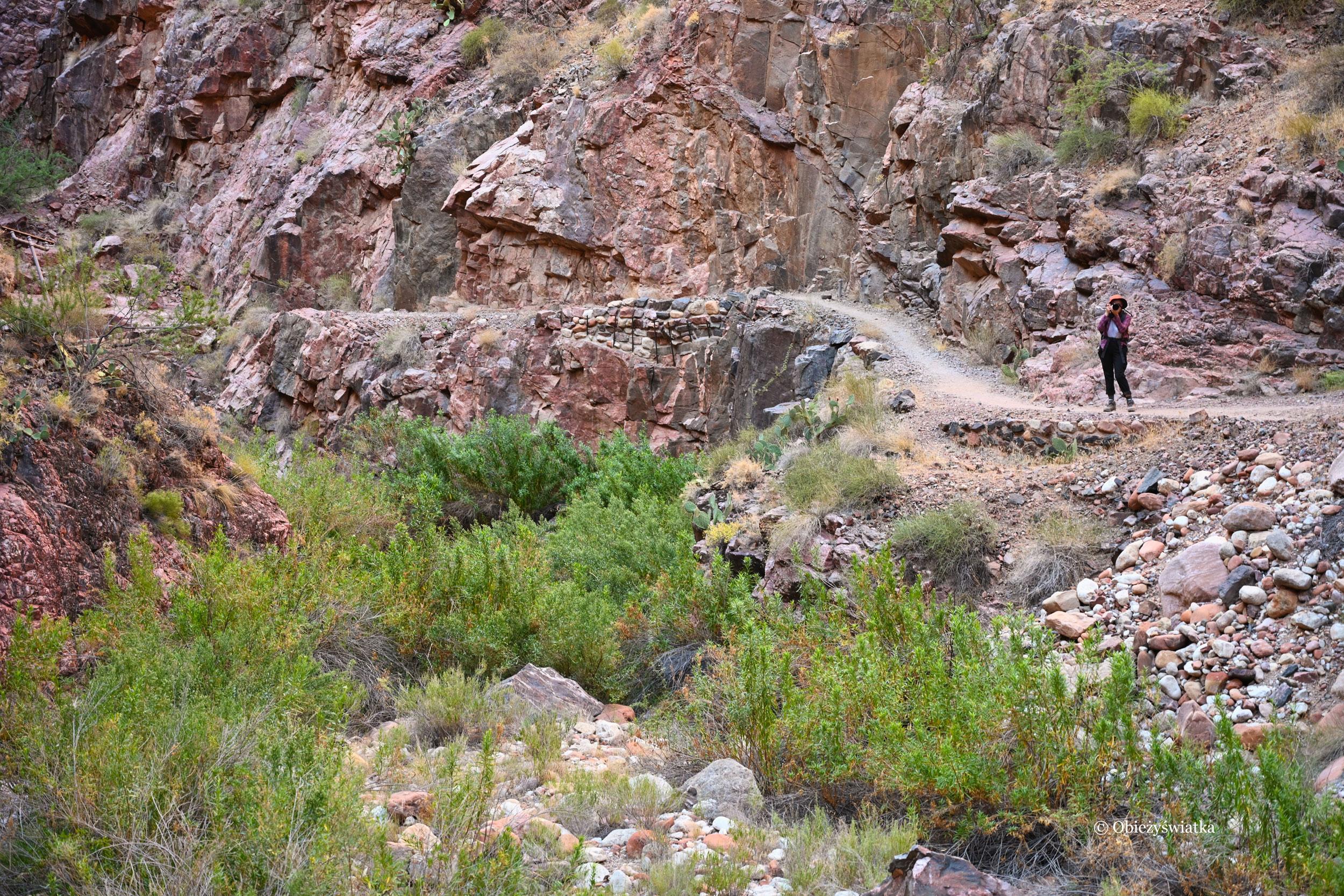 Droga jest przepiękna i fotogeniczna - North Kaibab Trail, Grand Canyon