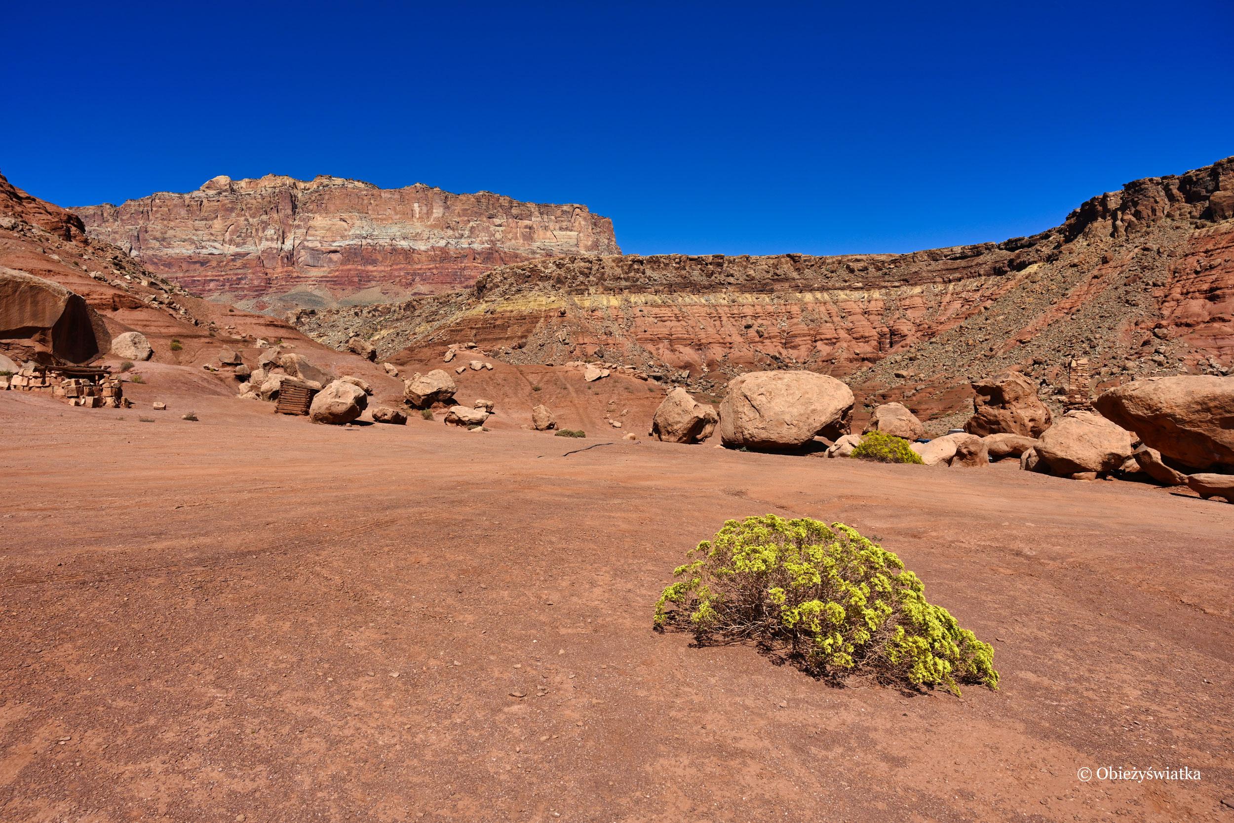 Krajobraz wzdłuż drogi Highway 89A, Arizona