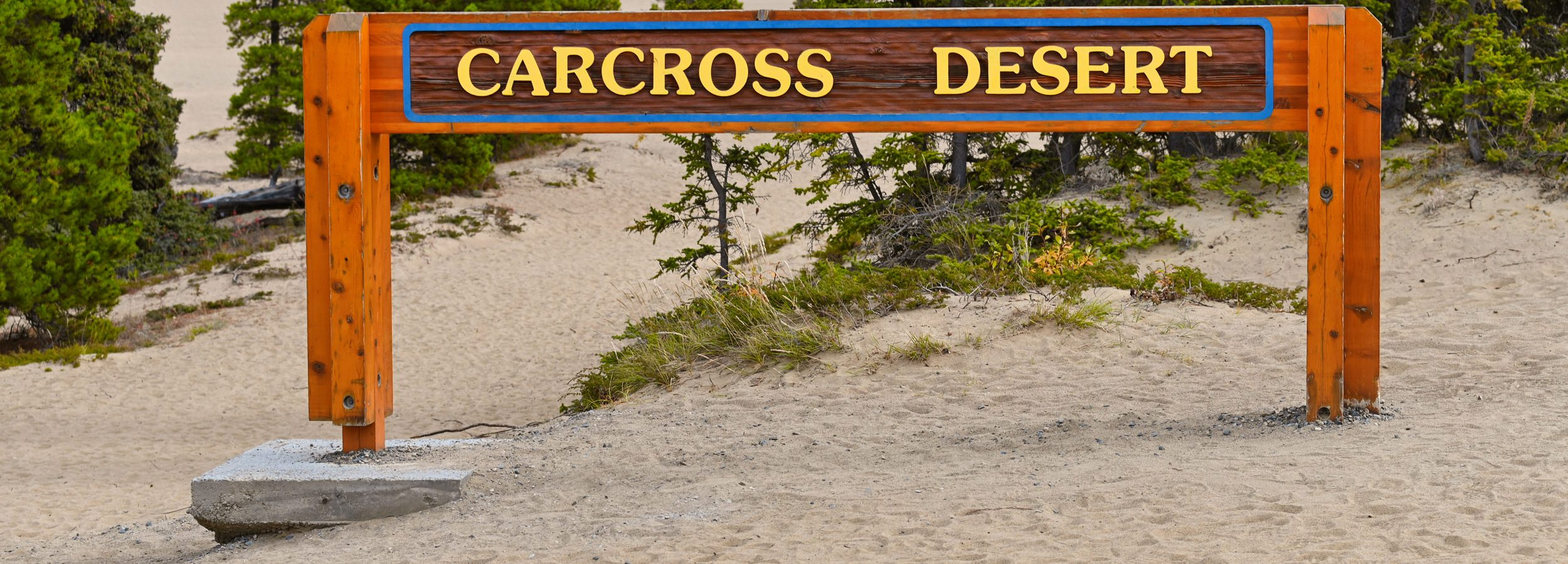 Carcross Desert, Yukon, Canada